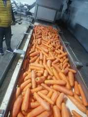 Мытая морковь